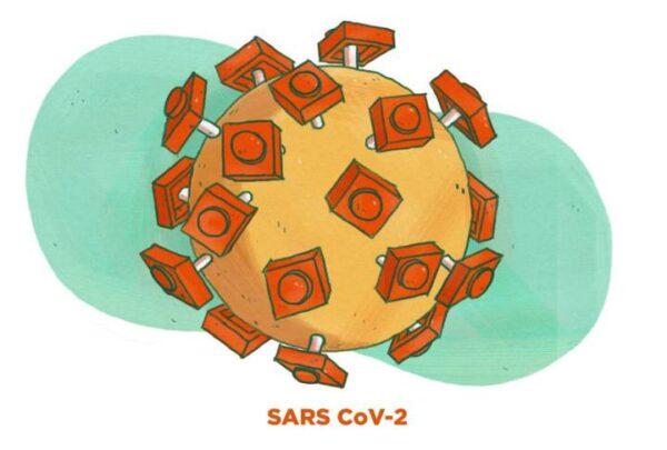 Mutasyonlu Koronavirüs ne demek - Diken Proteinleri